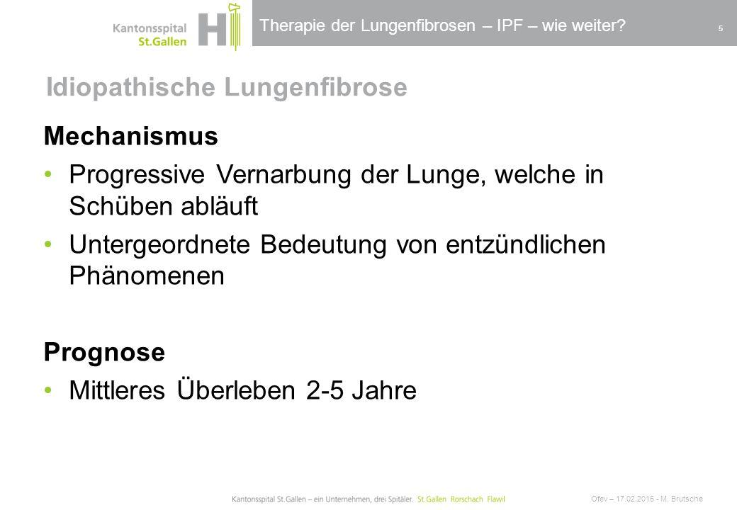 Therapie der Lungenfibrosen – IPF – wie weiter? Idiopathische Lungenfibrose Ofev – 17.02.2015 - M. Brutsche 5 Mechanismus Progressive Vernarbung der L