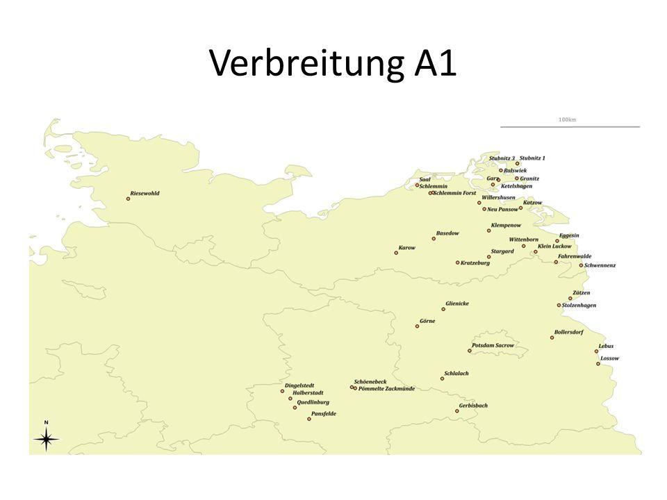 Verbreitung A1