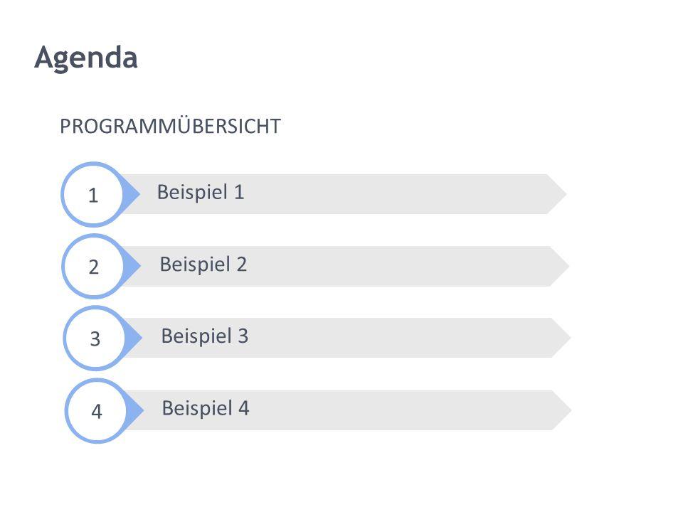 Beispiel 3 Beispiel 4 Beispiel 2 Agenda Beispiel 1 PROGRAMMÜBERSICHT 1 2 3 4