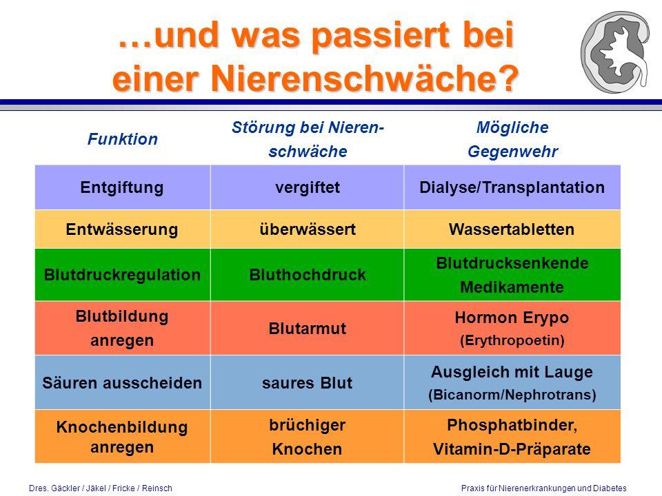 Dres. Gäckler / Jäkel / Fricke / Reinsch Praxis für Nierenerkrankungen und Diabetes Funktion Störung bei Nieren- schwäche Mögliche Gegenwehr Entgiftun