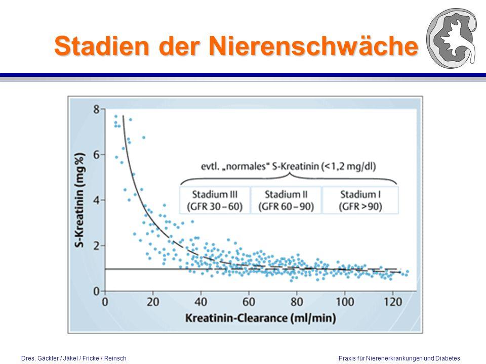 Dres. Gäckler / Jäkel / Fricke / Reinsch Praxis für Nierenerkrankungen und Diabetes Stadien der Nierenschwäche