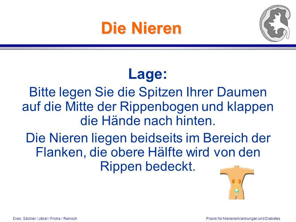 Dres. Gäckler / Jäkel / Fricke / Reinsch Praxis für Nierenerkrankungen und Diabetes Die Nieren Lage: Bitte legen Sie die Spitzen Ihrer Daumen auf die