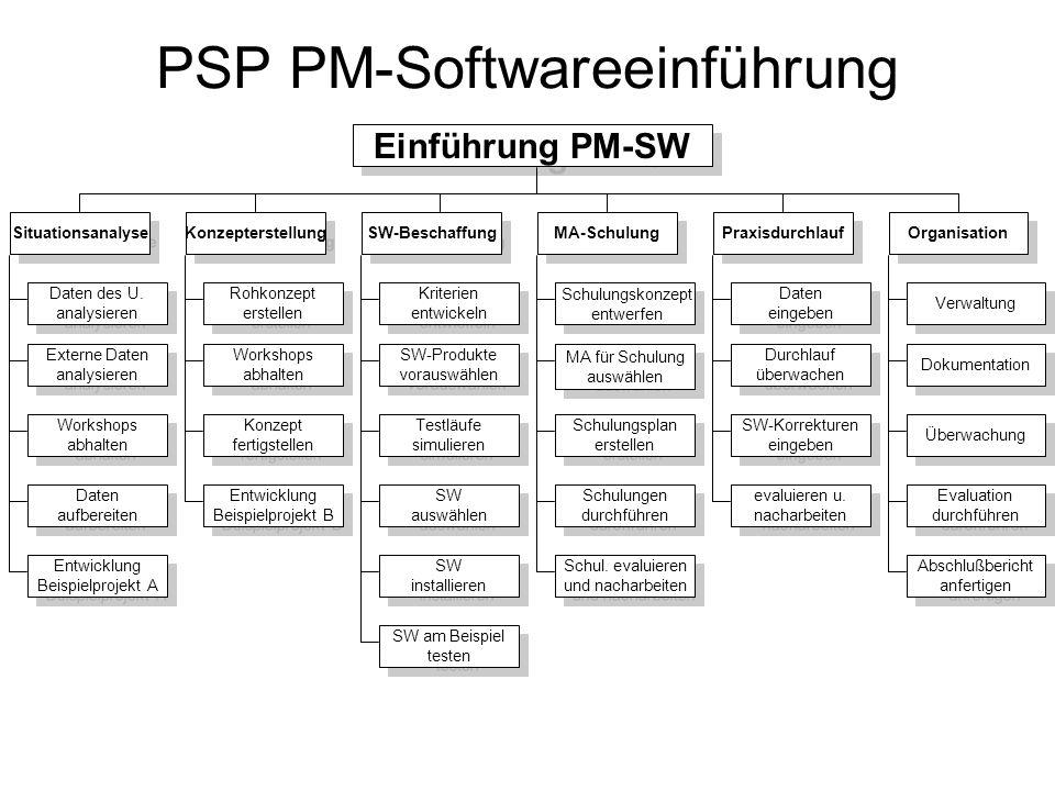 PSP PM-Softwareeinführung Einführung PM-SW Konzepterstellung SW-Beschaffung MA-Schulung Situationsanalyse SW-Produkte vorauswählen SW-Produkte vorausw