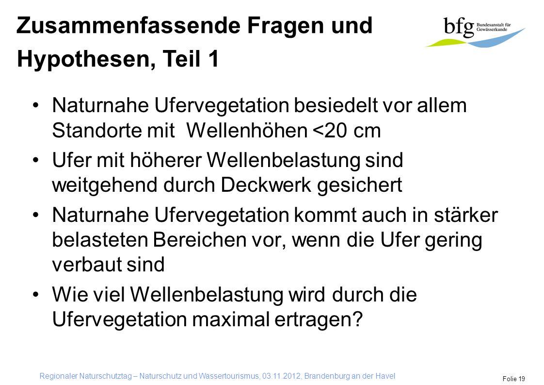 Regionaler Naturschutztag – Naturschutz und Wassertourismus, 03.11.2012, Brandenburg an der Havel Folie 19 Naturnahe Ufervegetation besiedelt vor alle