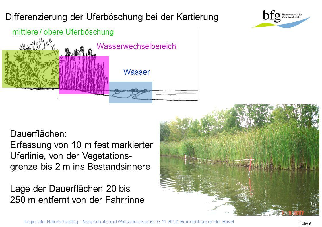 Regionaler Naturschutztag – Naturschutz und Wassertourismus, 03.11.2012, Brandenburg an der Havel Folie 9 Differenzierung der Uferböschung bei der Kar