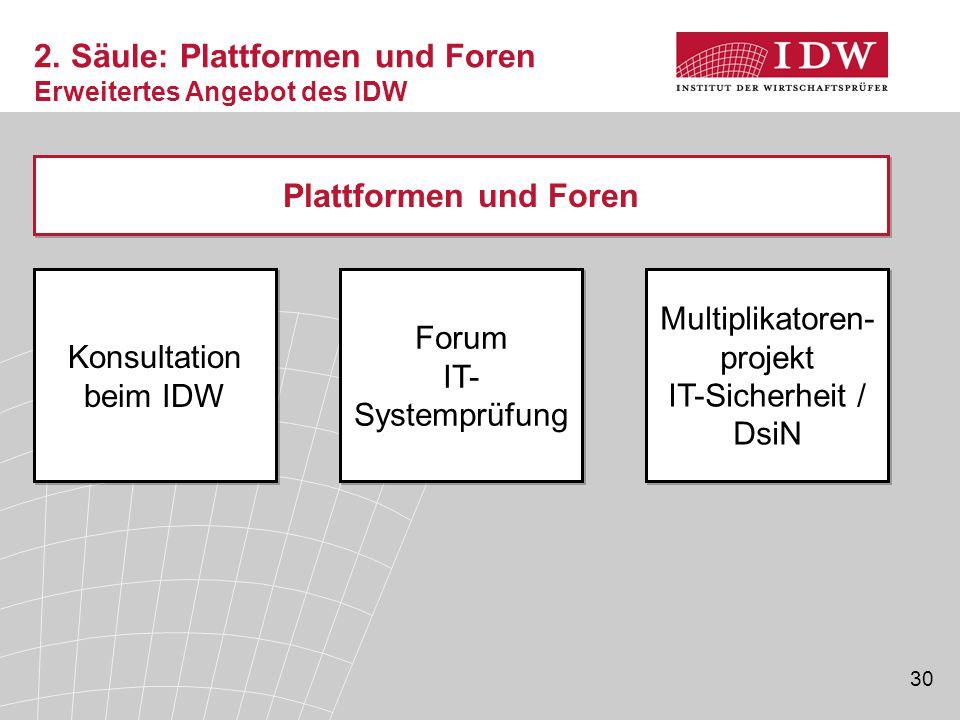30 Konsultation beim IDW Plattformen und Foren Multiplikatoren- projekt IT-Sicherheit / DsiN Forum IT- Systemprüfung 2. Säule: Plattformen und Foren E
