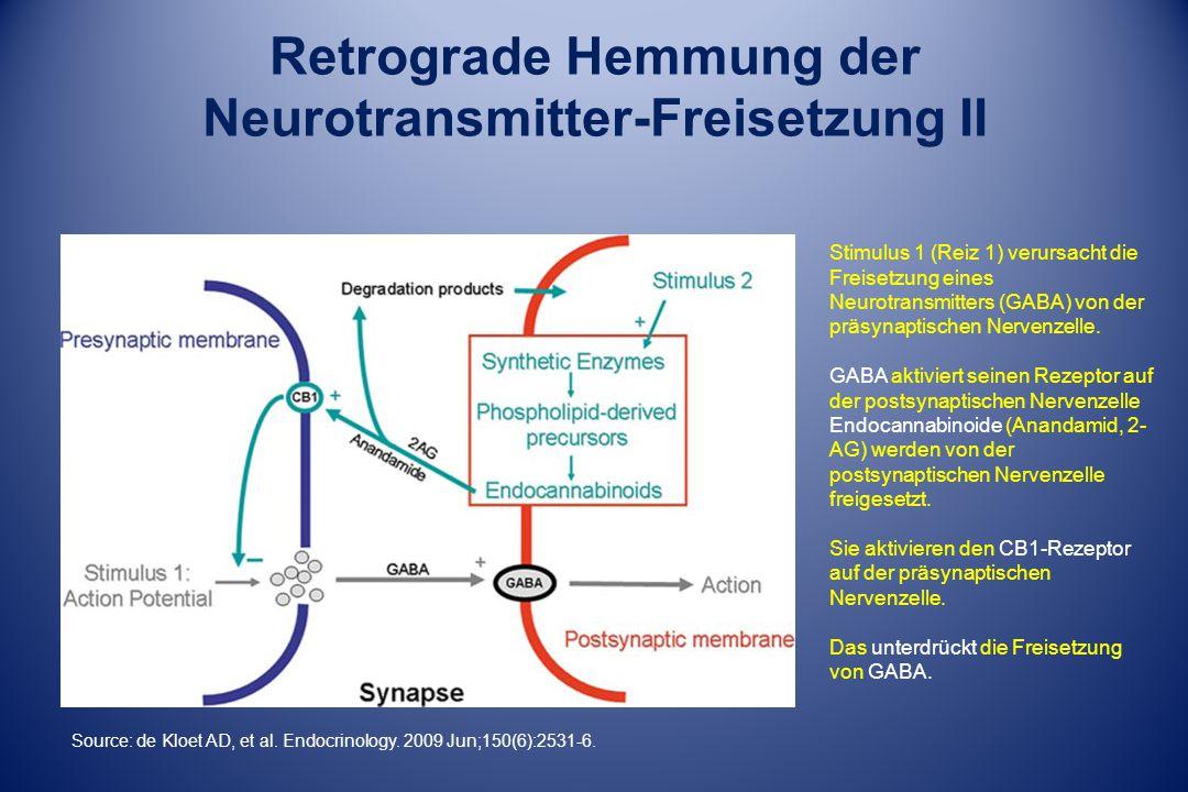 Stimulus 1 (Reiz 1) verursacht die Freisetzung eines Neurotransmitters (GABA) von der präsynaptischen Nervenzelle. GABA aktiviert seinen Rezeptor auf