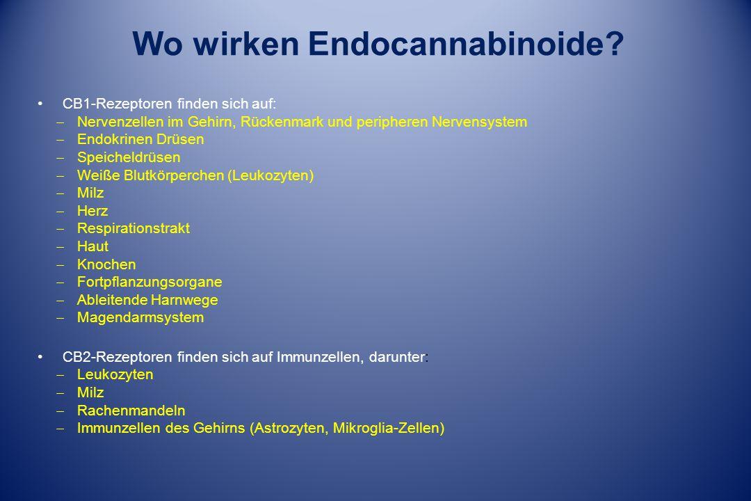 Wo wirken Endocannabinoide? CB1-Rezeptoren finden sich auf:  Nervenzellen im Gehirn, Rückenmark und peripheren Nervensystem  Endokrinen Drüsen  Spe