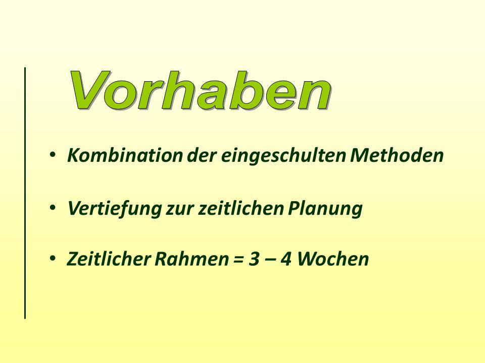 Kombination der eingeschulten Methoden Vertiefung zur zeitlichen Planung Zeitlicher Rahmen = 3 – 4 Wochen