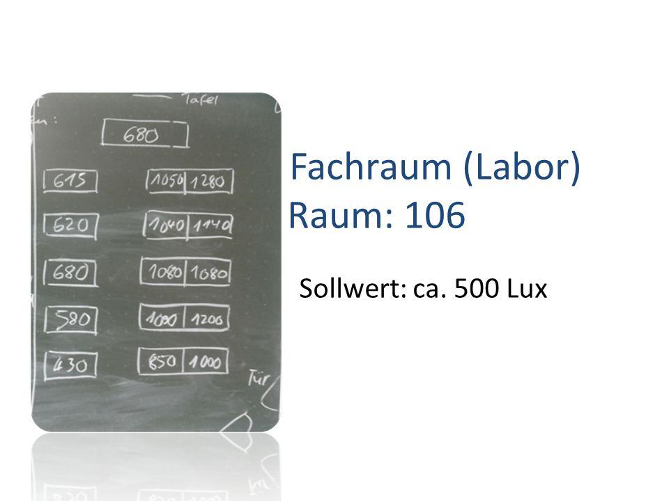 Fachraum (Labor) Raum: 106 Sollwert: ca. 500 Lux