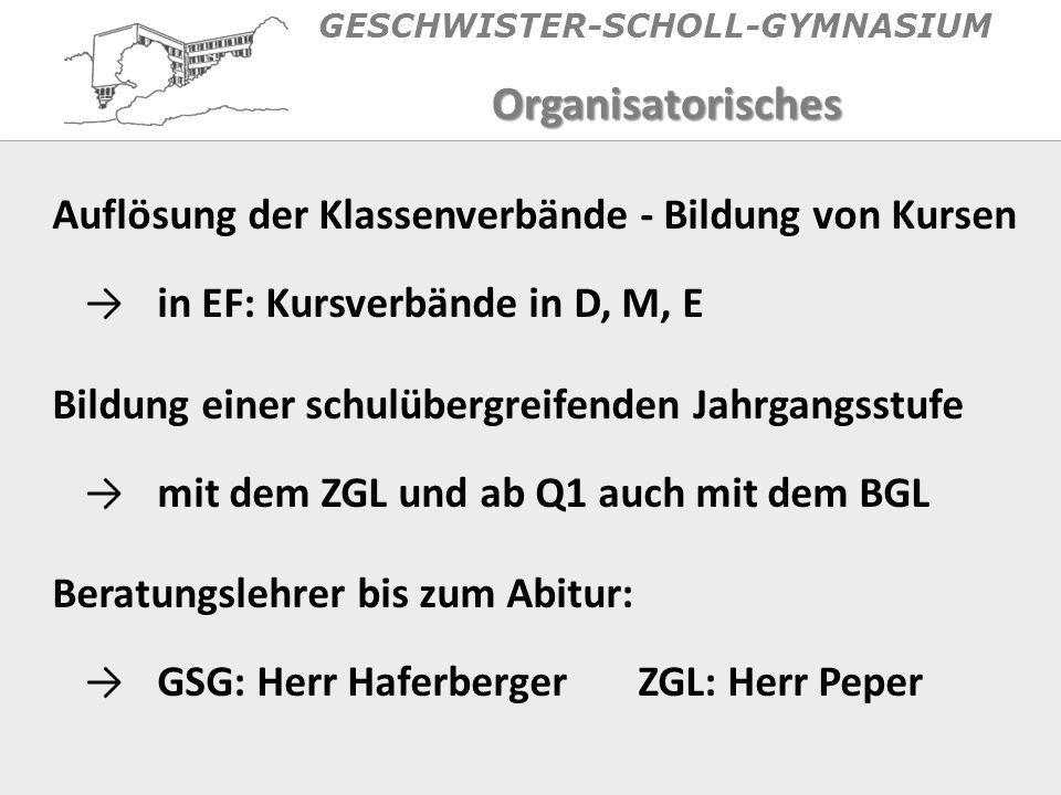 GESCHWISTER-SCHOLL-GYMNASIUM Jahrgangsstufenversammlungen Informationspflicht (!) der Schüler - Schwarzes Brett Verbindliche Termine (z.B.