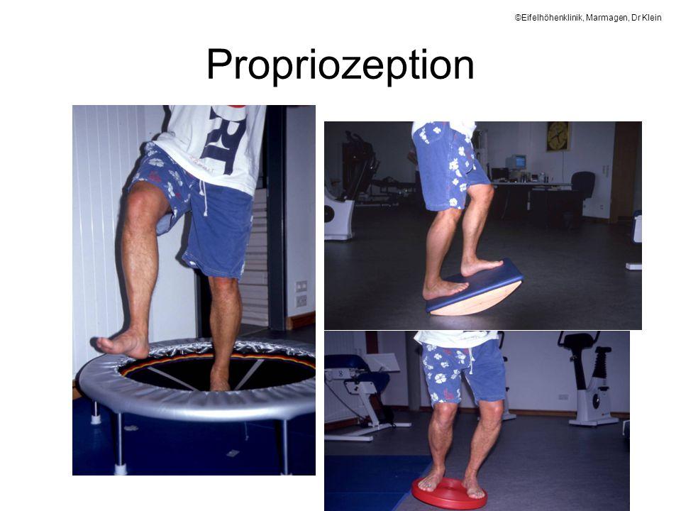 Propriozeption ©Eifelhöhenklinik, Marmagen, Dr Klein