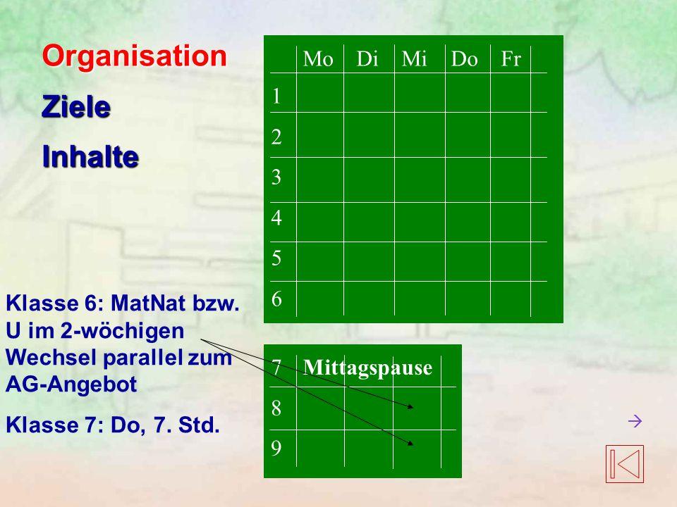 OrganisationZieleInhalte 123456123456 Mo Di Mi Do Fr Mittagspause789789 Klasse 6: MatNat bzw. U im 2-wöchigen Wechsel parallel zum AG-Angebot Klasse 7