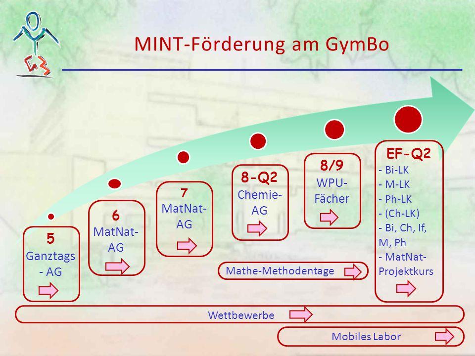 Klasse 5: Ganztags-AG Im gebundenen Ganztag ist Spielraum für eine Ganztags-AG in der Jgst.