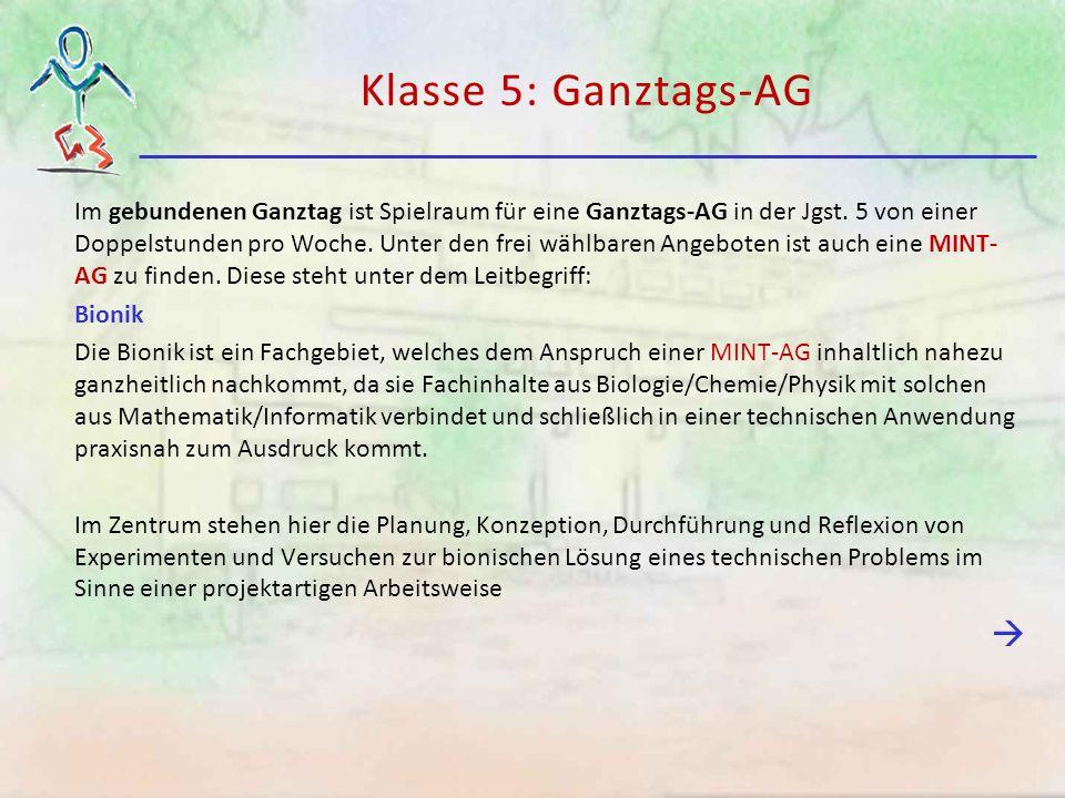 Klasse 5: Ganztags-AG Im gebundenen Ganztag ist Spielraum für eine Ganztags-AG in der Jgst. 5 von einer Doppelstunden pro Woche. Unter den frei wählba