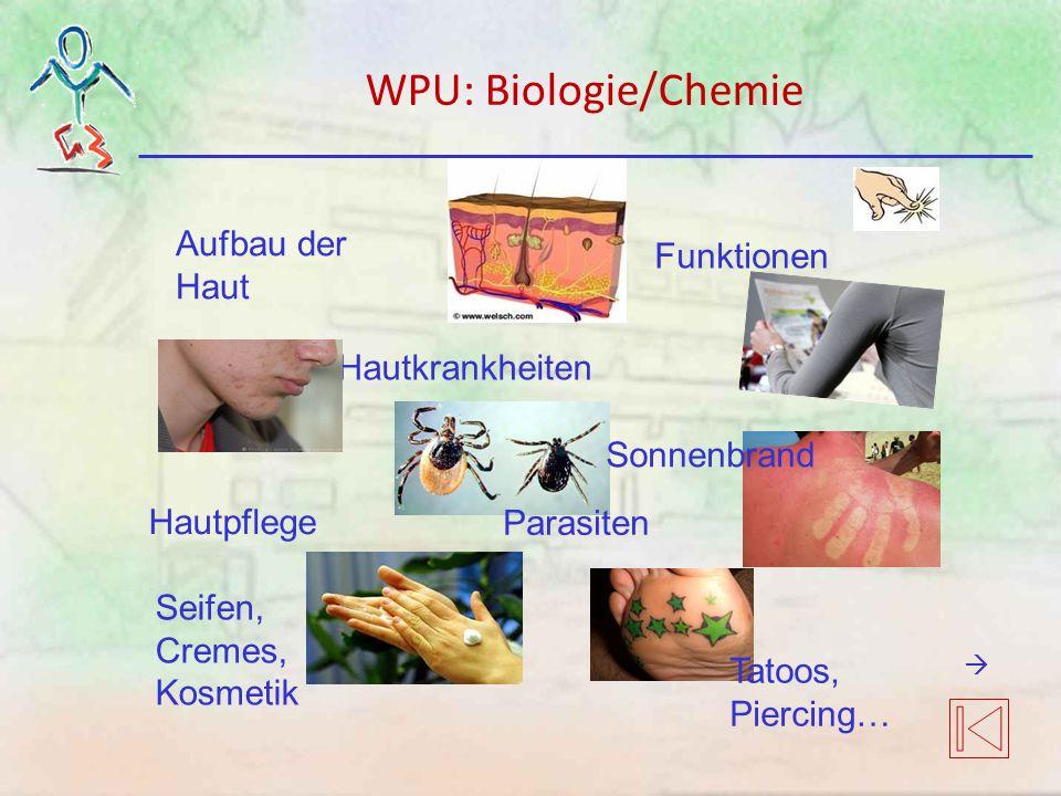 Aufbau der Haut Funktionen Hautkrankheiten Hautpflege Seifen, Cremes, Kosmetik Tatoos, Piercing… Sonnenbrand Parasiten WPU: Biologie/Chemie 