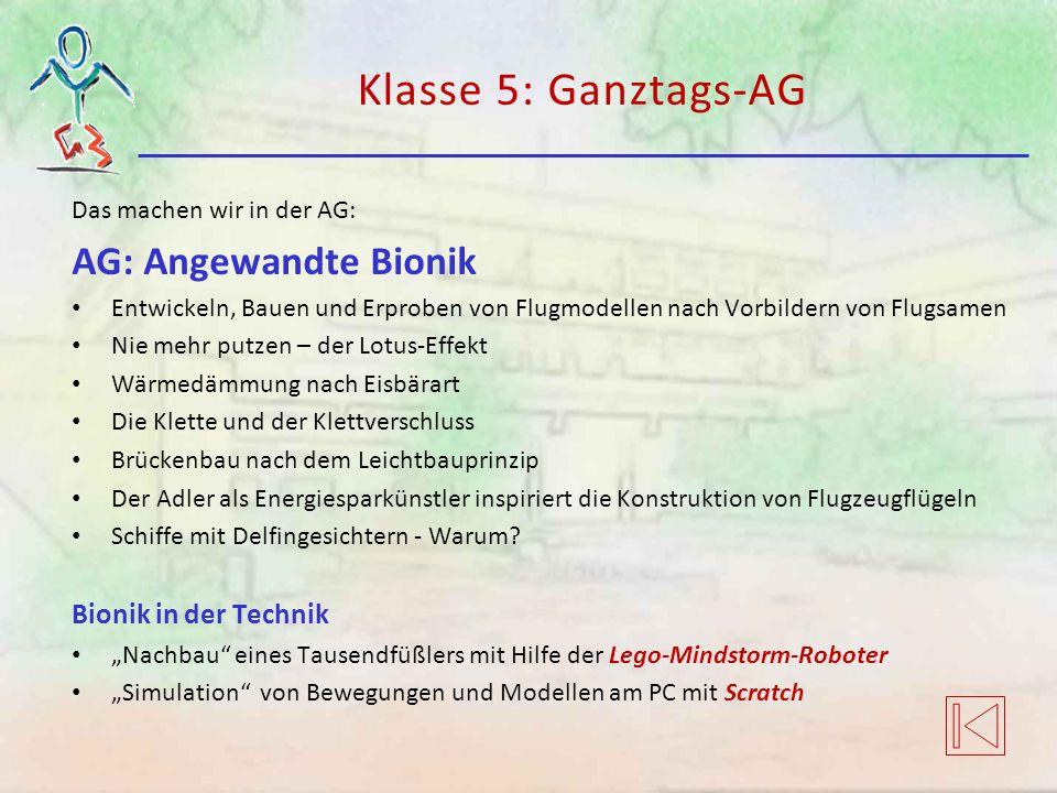 Klasse 5: Ganztags-AG Das machen wir in der AG: AG: Angewandte Bionik Entwickeln, Bauen und Erproben von Flugmodellen nach Vorbildern von Flugsamen Ni
