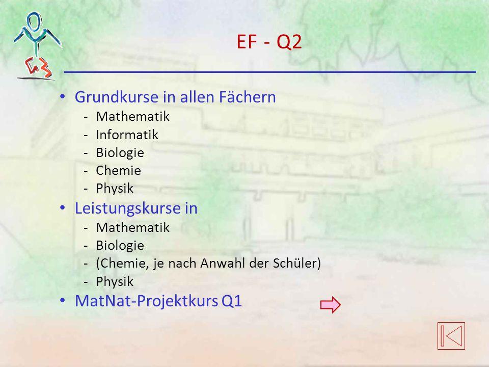 EF - Q2 Grundkurse in allen Fächern -Mathematik -Informatik -Biologie -Chemie -Physik Leistungskurse in -Mathematik -Biologie -(Chemie, je nach Anwahl der Schüler) -Physik MatNat-Projektkurs Q1