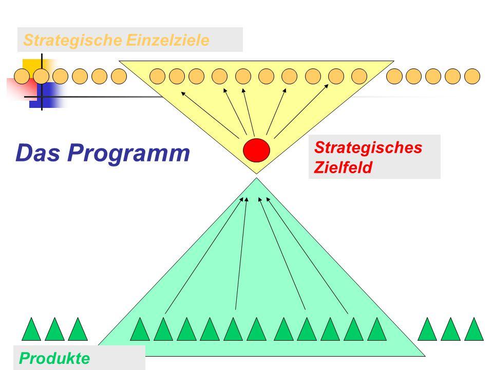 Produkte Strategische Einzelziele Strategisches Zielfeld Das Programm