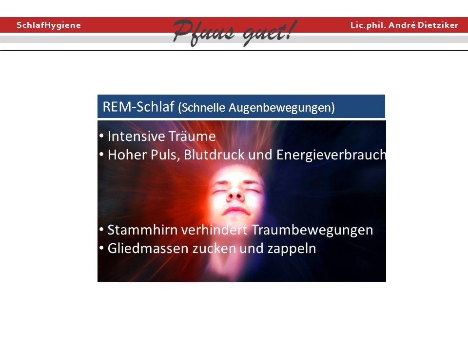 SchlafHygiene Lic.phil. André Dietziker Pfuus guet! REM-Schlaf (Schnelle Augenbewegungen) Intensive Träume Hoher Puls, Blutdruck und Energieverbrauch
