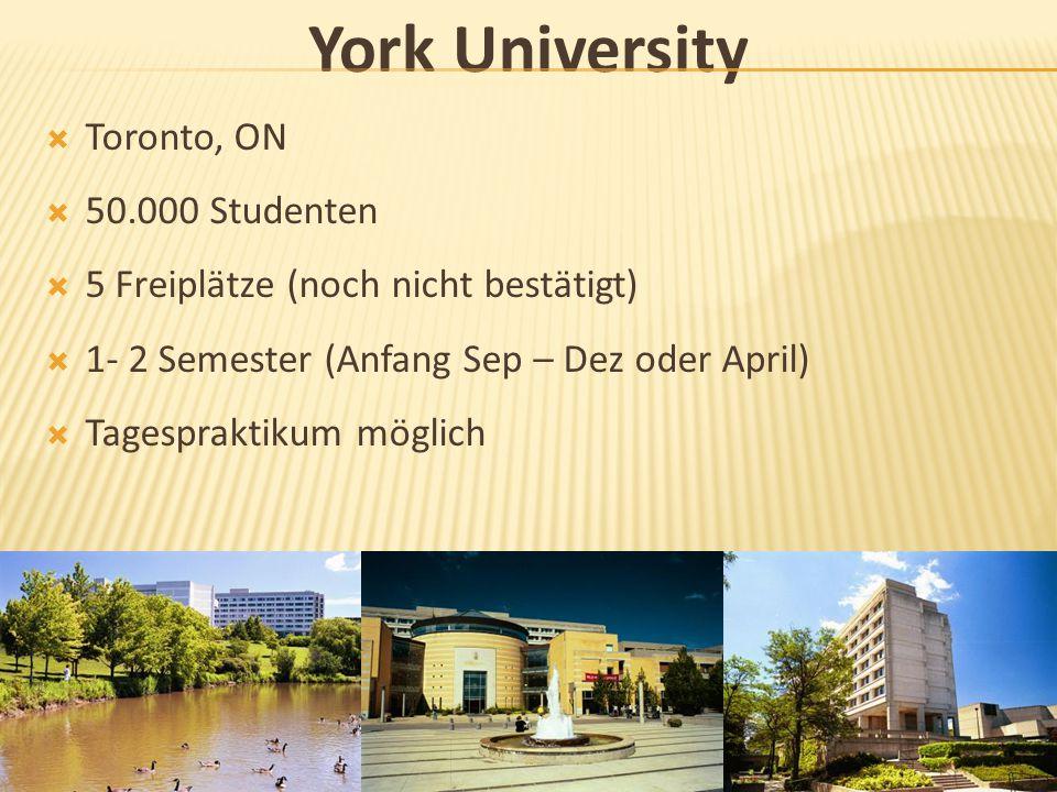 York University  Toronto, ON  50.000 Studenten  5 Freiplätze (noch nicht bestätigt)  1- 2 Semester (Anfang Sep – Dez oder April)  Tagespraktikum