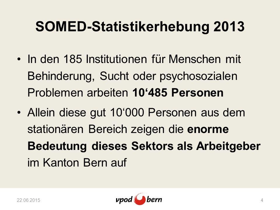 SOMED-Statistikerhebung 2013 In den 185 Institutionen für Menschen mit Behinderung, Sucht oder psychosozialen Problemen arbeiten 10'485 Personen Allei