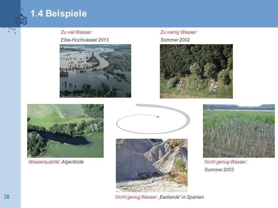 """Nicht genug Wasser: Sommer 2003 Nicht genug Wasser """"Badlands in Spanien Wasserqualität: Algenblüte Zu viel Wasser: Elbe-Hochwasser 2013 Zu wenig Wasser: Sommer 2002 1.4 Beispiele 38"""