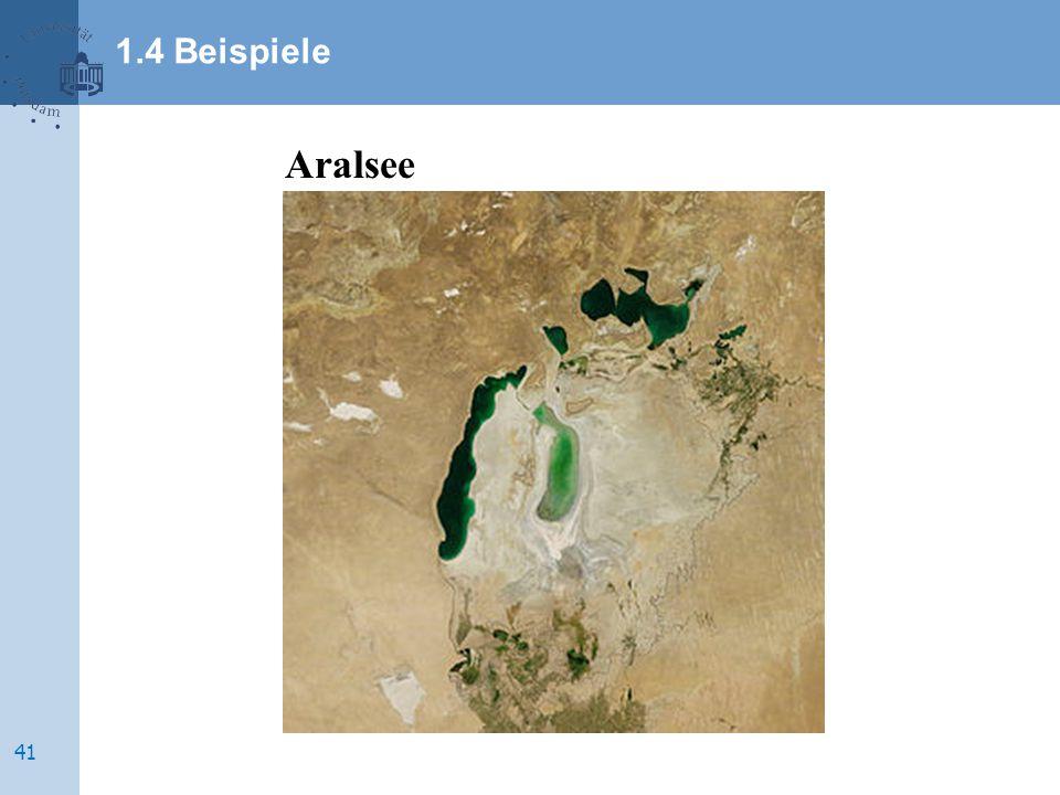 Aralsee 1.4 Beispiele 41