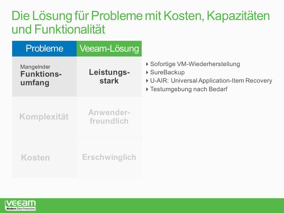 Die Lösung für Probleme mit Kosten, Kapazitäten und Funktionalität
