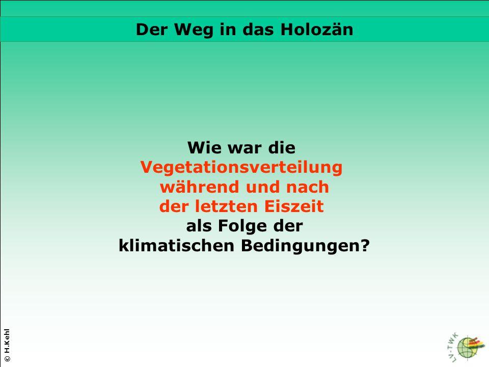 © H.Kehl Die drei wichtigsten Parameter Wie war die Vegetationsverteilung während und nach der letzten Eiszeit als Folge der klimatischen Bedingungen?
