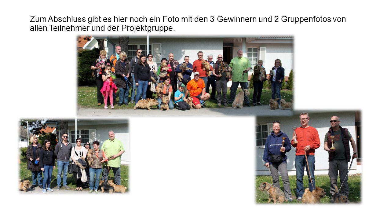 Zum Abschluss gibt es hier noch ein Foto mit den 3 Gewinnern und 2 Gruppenfotos von allen Teilnehmer und der Projektgruppe.