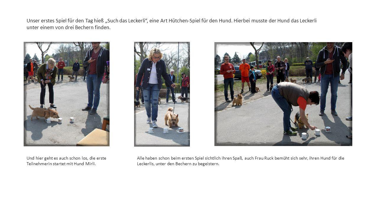 """Unser erstes Spiel für den Tag hieß """"Such das Leckerli"""", eine Art Hütchen-Spiel für den Hund. Hierbei musste der Hund das Leckerli unter einem von dre"""