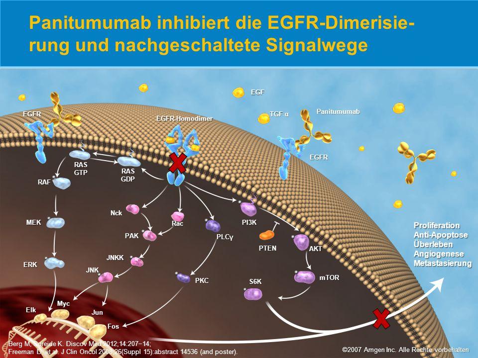 Panitumumab inhibiert die EGFR-Dimerisie- rung und nachgeschaltete Signalwege Berg M, Soreide K. Discov Med 2012;14:207−14; Freeman D, et al. J Clin O