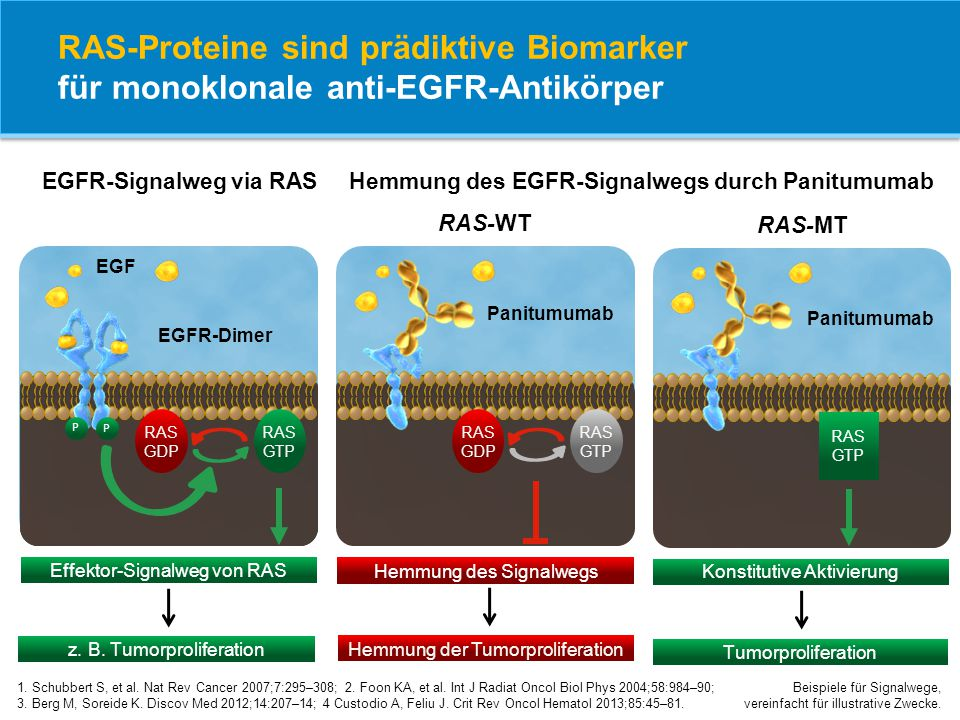 RAS-Proteine sind prädiktive Biomarker für monoklonale anti-EGFR-Antikörper 1. Schubbert S, et al. Nat Rev Cancer 2007;7:295–308; 2. Foon KA, et al. I