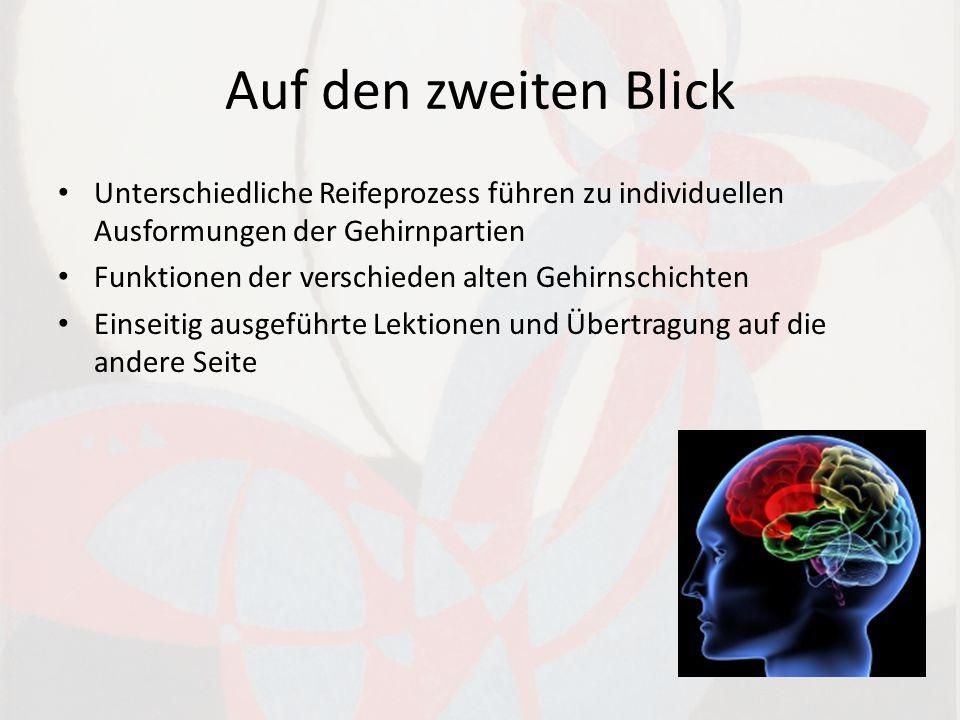 Auf den zweiten Blick Unterschiedliche Reifeprozess führen zu individuellen Ausformungen der Gehirnpartien Funktionen der verschieden alten Gehirnschichten Einseitig ausgeführte Lektionen und Übertragung auf die andere Seite