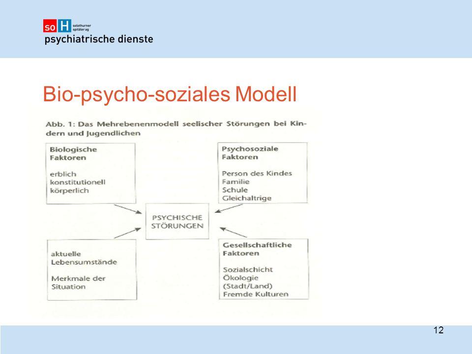 Bio-psycho-soziales Modell 12