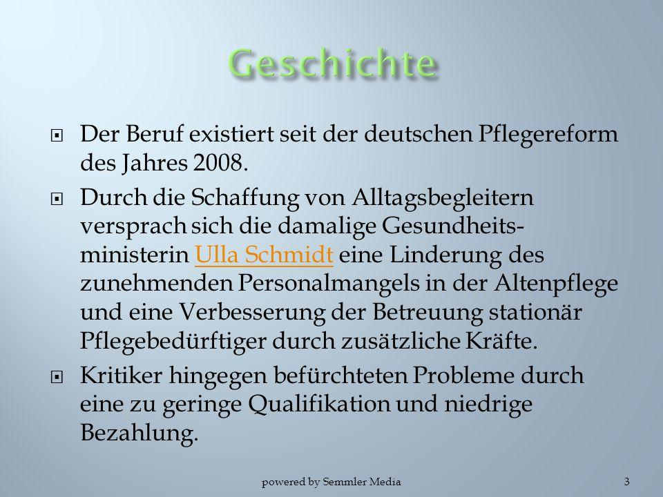  Der Beruf existiert seit der deutschen Pflegereform des Jahres 2008.  Durch die Schaffung von Alltagsbegleitern versprach sich die damalige Gesundh