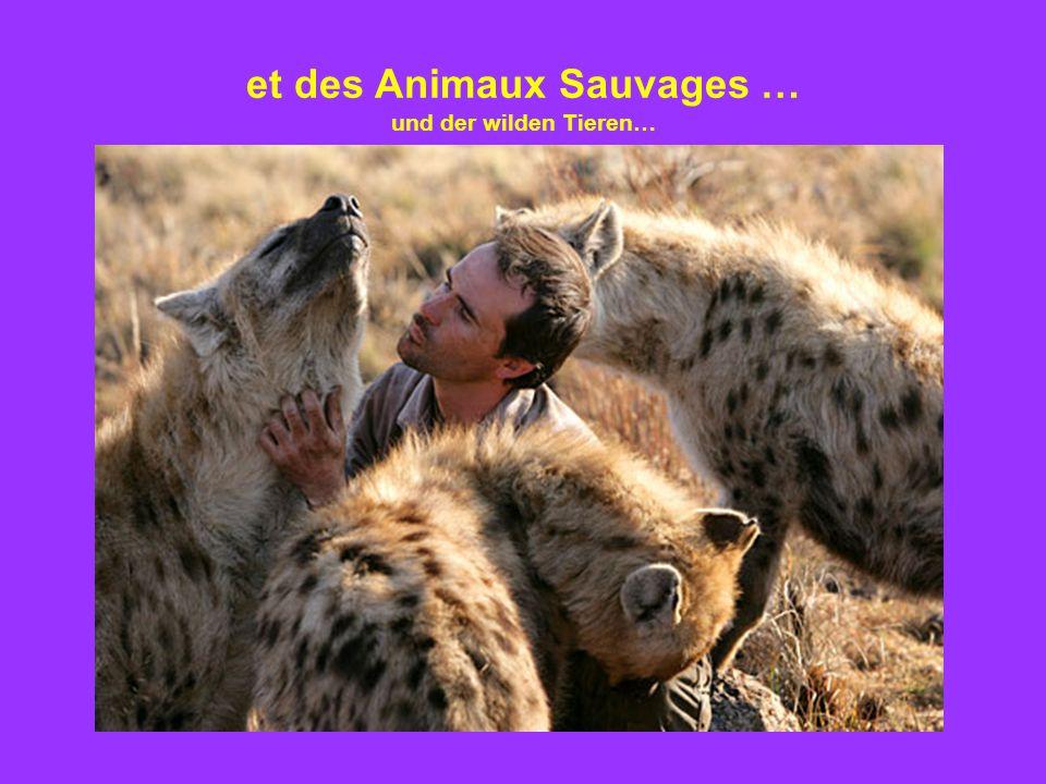 et des Animaux Sauvages … und der wilden Tieren…