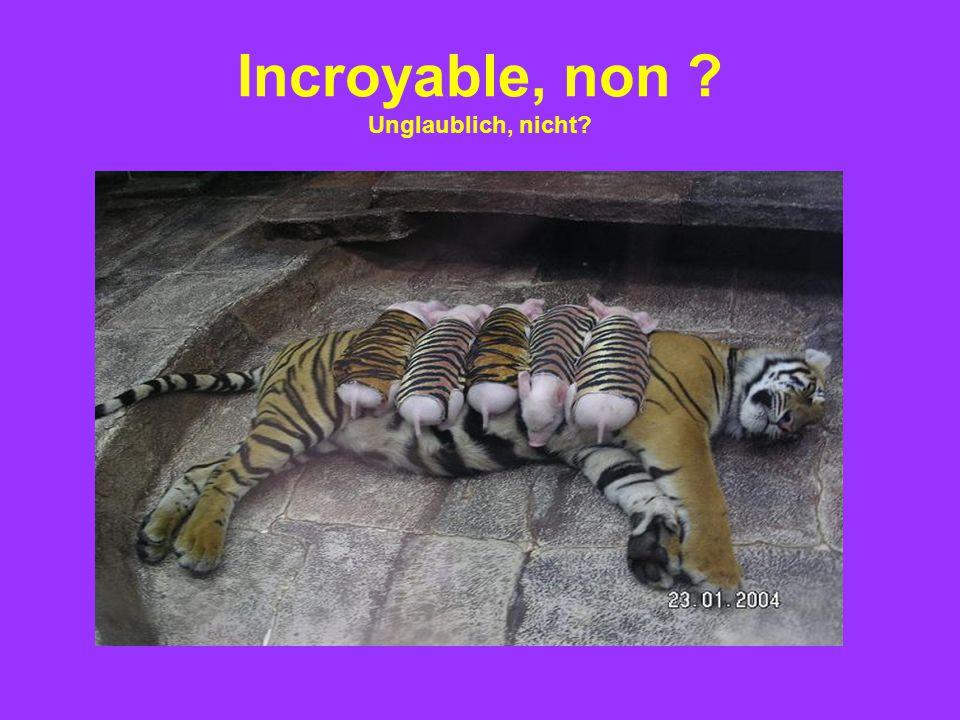 Incroyable, non Unglaublich, nicht