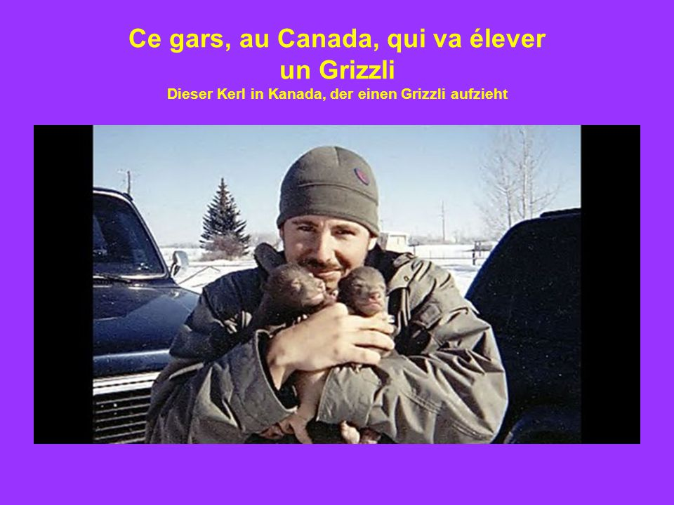 Ce gars, au Canada, qui va élever un Grizzli Dieser Kerl in Kanada, der einen Grizzli aufzieht