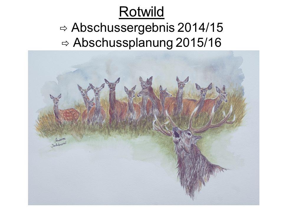 Rotwildabschuss-Ergebnis 2014/15 Rotwildbezirk Meißner-Kaufunger Wald Hirsch Kl.