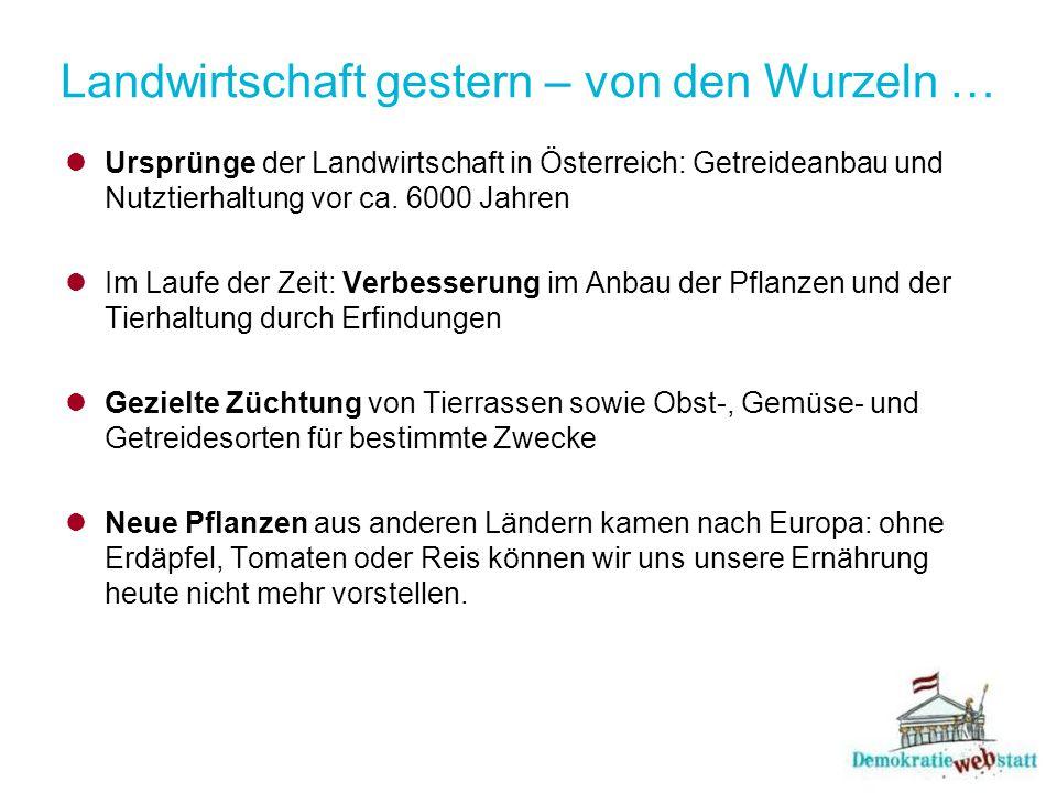 Landwirtschaft gestern – von den Wurzeln … Ursprünge der Landwirtschaft in Österreich: Getreideanbau und Nutztierhaltung vor ca.