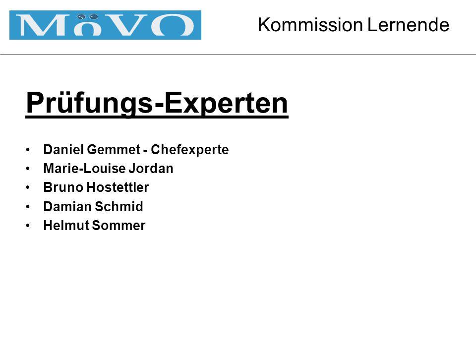 Kommission Lernende Prüfungs-Experten Daniel Gemmet - Chefexperte Marie-Louise Jordan Bruno Hostettler Damian Schmid Helmut Sommer