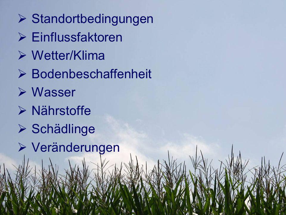  Standortbedingungen  Einflussfaktoren  Wetter/Klima  Bodenbeschaffenheit  Wasser  Nährstoffe  Schädlinge  Veränderungen