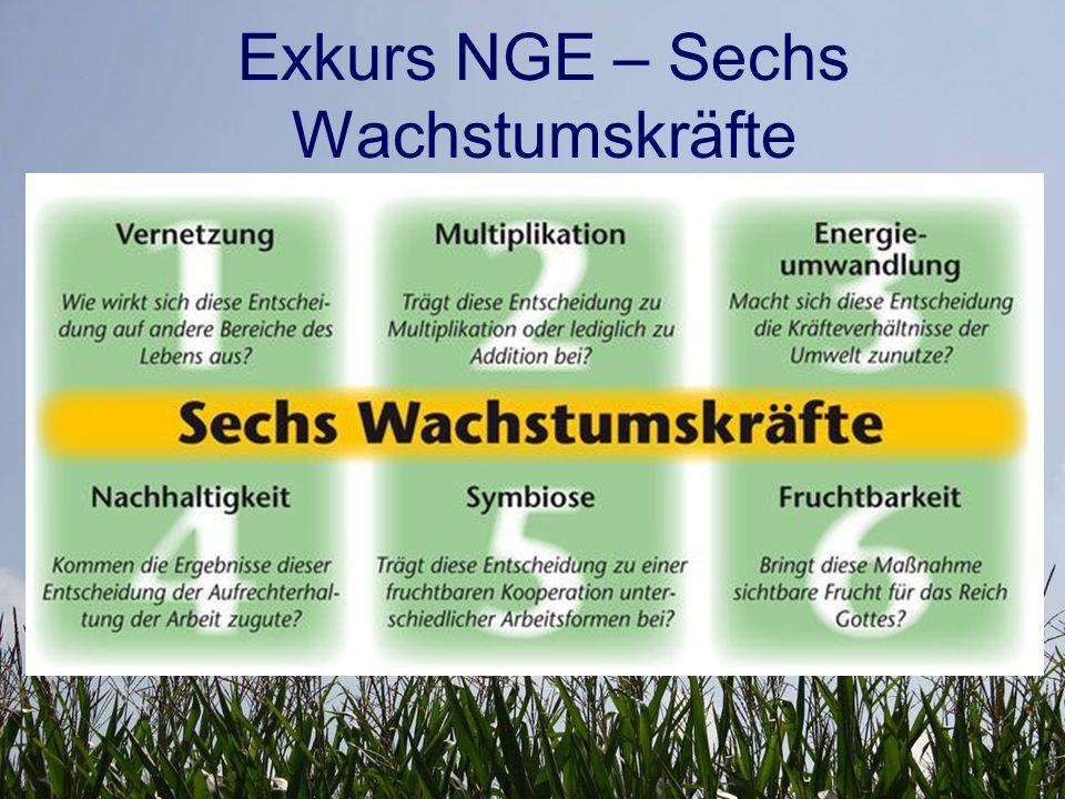 Exkurs NGE – Sechs Wachstumskräfte