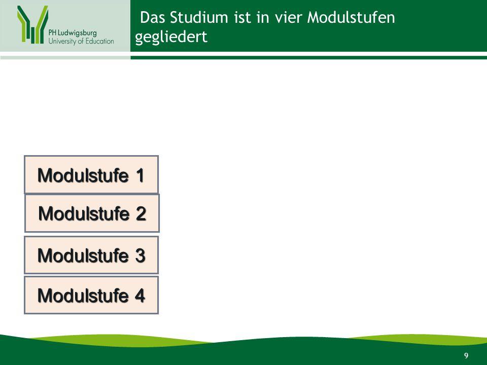 9 Das Studium ist in vier Modulstufen gegliedert Modulstufe 1 Modulstufe 2 Modulstufe 3 Modulstufe 4