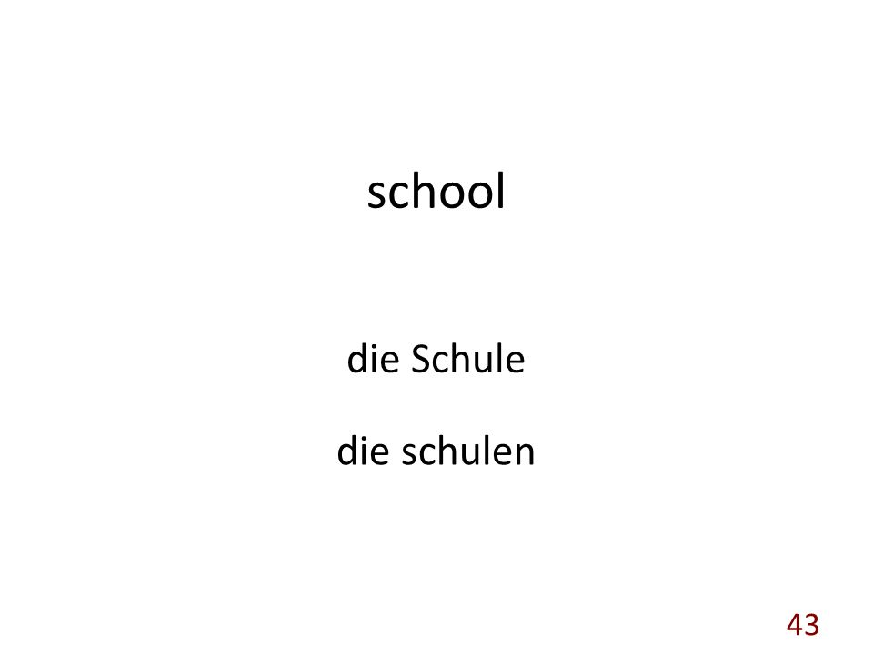 school die Schule die schulen 43