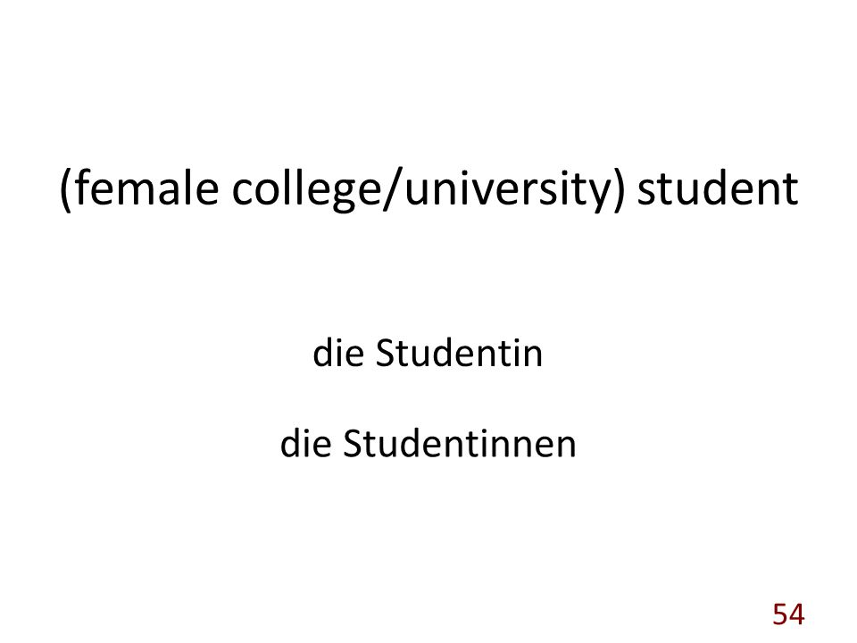 (female college/university) student die Studentin die Studentinnen 54