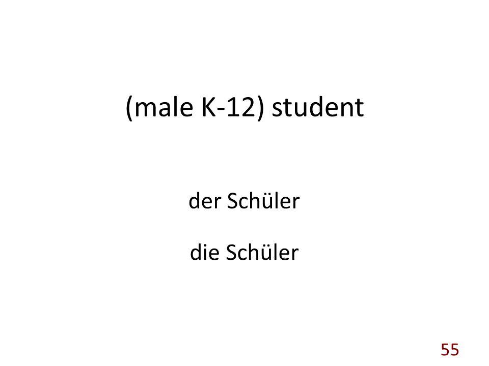 (male K-12) student der Schüler die Schüler 55