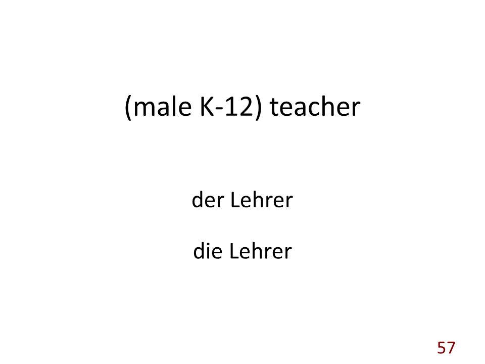 (male K-12) teacher der Lehrer die Lehrer 57